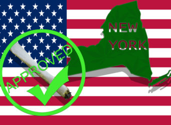 legal recreational cannabis new york